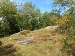 Middlesex Fells Reservation