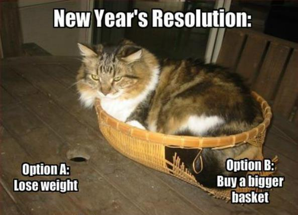 New Year's Resolution Cat in a Basket